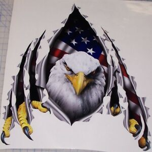 American Flag Eagle Rip Thew Decal Camper Rv Motorhome Graphic Sticker Decals