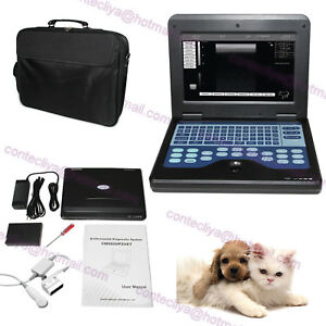 Digital Vet Veterinary Ultrasound Scanner Machine For Small Animal Pregnancy usa