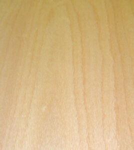 Steamed Beech Wood Veneer Sheet 48 X 96 On Paper Backer 1 40th Thickness a