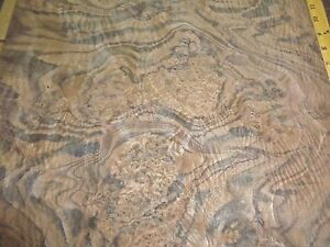 Walnut Burl Wood Veneer 16 X 31 Raw Veneer no Backing aaa Quality 1 42