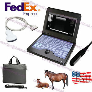 Digital Vet Veterinary Laptop Ultrasound Scanner Machine With 2 Probe For Animal
