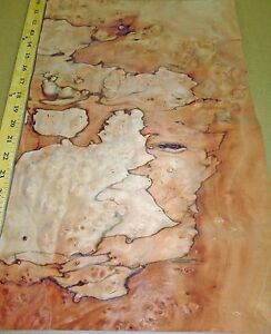 Pepperwood Pimento Burl Wood Veneer 13 X 20 Raw No Backing 1 42 Thickness