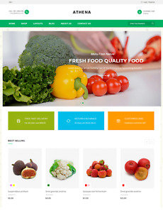 Fresh Food Fruit Grocery vegetable Store unlimited Trial Shopify Sell Website