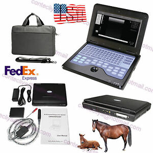 Portable Digital Laptop Ultrasound Scanner Veterinary Machine 7 5m Rectal Probe