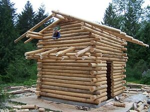Onalaska Log House Building Class May 5 Or May 12 Butt And Pass