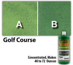 Professional Easy To Apply Water Based Concrete Stain Golf Course 8oz