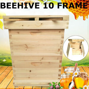 10 frame 2 Level Beekeeping Starter Kit Bee Hive Frame beehive Frames Wooden