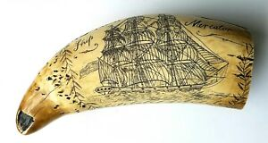 Vintage Scrimshaw Faux Resin Carved Sperm Whale Tooth Ship Mercator Nude 6 Inch