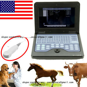 Usa Notebook Veterinary B ultrasound Diagnostic System micro Probe animals Use