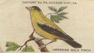 Vintage Tobacco Cigarette Silk Use In Crazy Quilt Bird American Goldfinch