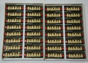 Mouth Incisor 6x1 Snd Denture Acrylic Resin 32 Plate Dentures B4 Color 2box