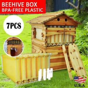 Upgraded Beehive Brood Box 7pcs Free Flow Honey Hive Frames Beekeeping