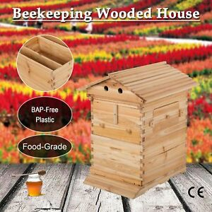 Natural Wooden Super Brood Beekeeping House For 7 Pcs Auto Honey Bee Hive Frames