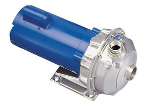 Goulds 1st1f2b4 Npe Series End Suction 316l Stainless Centrifugal Water Pump