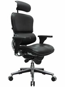 Eurotech Seating Ergohuman Le9ergn High Back Leather Swivel Chair Black