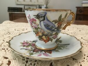 Vintage Hand Painted Japan Tea Cup And Saucer Blue Jay Bird Pretty Design