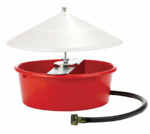 Little Giant Covered Automatic Poultry Waterer Open Box