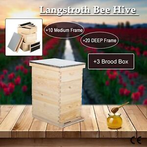 10 frame Beekeeping Kit Bee House Hive Frame bee Hive Frame W Metal Roof