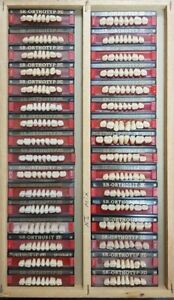 Lot X 32 Dental Lab Acrylic Teeth Dentures Vivadent Ivoclar Sr Orthotyp Pe Mix 2