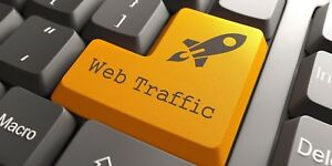 Web Traffic By Country Targeted Website Traffic 100 000