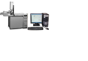 Hp Gc 6890 Plus With Dual Injectors Dual Detectors As And Sw Loaded On Pc