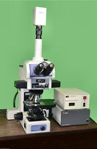 Nikon Eclipse E800m Upright Dic Fluorescent Epi Research Microscope