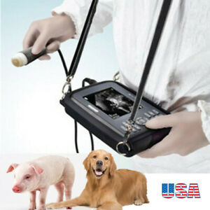 Vet Veterinary Laptop Ultrasound Scanner Machine Handscan Animal W Battery case