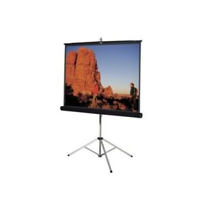 Da lite Carpeted Picture King Projection Screen With Tripod 96x96 93876