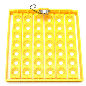 42 Position 220v Eggs Turner Automatic Chicken Quail Bird Poultry Egg Incubator