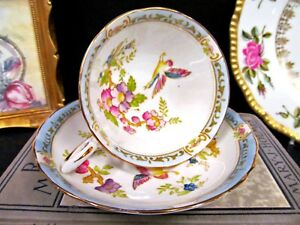 Tuscan Tea Cup And Saucer Painted Floral Bird Pattern Teacup Blue Bands