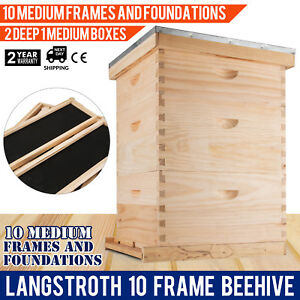 Langstroth Bee Hive 10 Frame 2 Deep 1 Medium Box Beehive Convenient Complete Kit