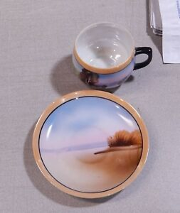 Vintage Tea Cup And Saucer Chikaramachi Hand Painted Made In Japan Porcelain