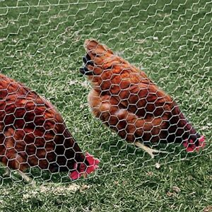 Galvanized Poultry Mesh Fence Netting Chicken Wire 60 In X 150 Feet 20 Gauge New