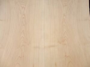 Maple Finished Wood Veneer Sheet 24 X 24 On Wood Backer 1 25 Thick A Grade