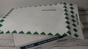 Box Of 100 Tyvek Self seal Expandable Envelopes 12 X 16 X 2 First Class
