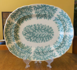 Antique Green Transferware Ironstone Platter Seaweed Coral Fern Staffordshire