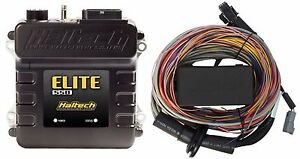 Haltech Ht 150404 Elite 550 Ecu 2 5m 8 Ft Premium Universal Wire in Harness