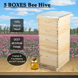 New 10 frame Size Beekeeping Kit Bee House Hive bee Hive Frame W Metal Roof