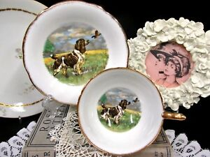Salisbury Tea Cup And Saucer Hunting Dog Scene Bird Teacup Wide Mouth Pattern