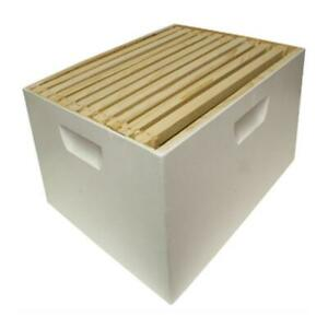 10 In H X 16 In W Assembled Deep Hive Box With 10 Frames And Foundation Lane