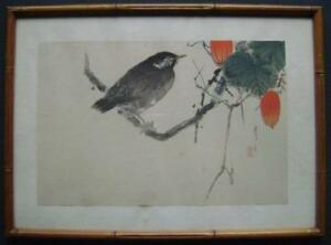 Shotei Wantanabe Japanese Woodblock Print Starling And Snake Gourd Rare