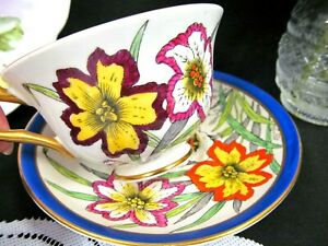 Rosina Tea Cup And Saucer Painted Flowers Teacup Pattern Blue Band Cup Saucer