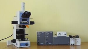 Used Nikon E800 Eclipse Fluorescence Trinocular Research Microscope