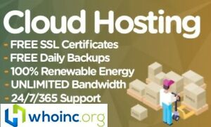 4 Websites Web Hosting For 1 Month 100 Ssd Cpanel Support Included
