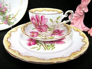 Tuscan Tea Cup And Saucer Painted Pink Floral Beaded Teacup Bands Of Cream Trio