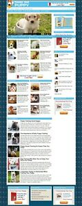 turnkey Websites Pre made Niche Sites Dfy free Domain Hosting