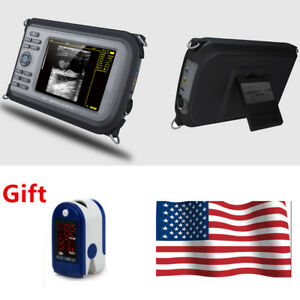Vet Laptop Ultrasound Scanner Diagnostic Machine Rectal For Cow horse sheep Usa