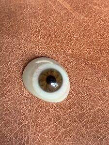 1910 1930s Prosthetic Glass Eye Vintage Antique Brown