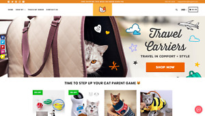 Website Business Shopify Drop Shipping Store Cat Niche