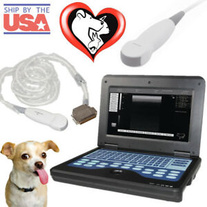 Vet Veterinary Laptop Ultrasound Scanner Machine micro Convex Probe For Cat dog